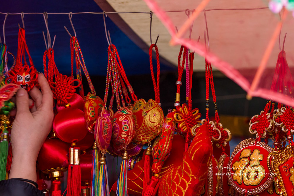 Chinese-New-Year-2017-25.jpg
