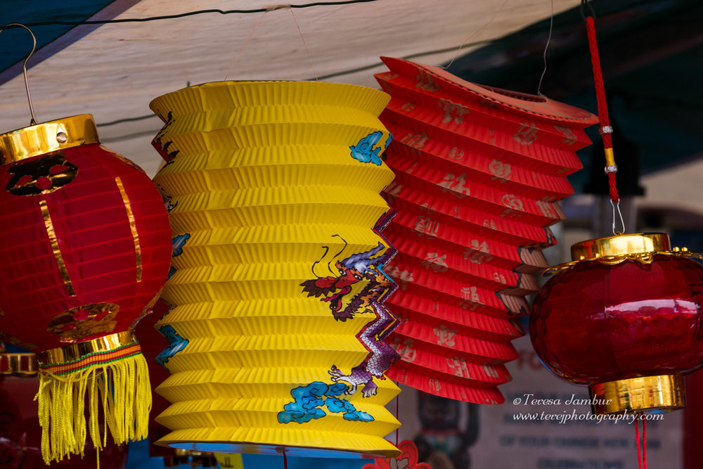 Chinese-New-Year-2017-26.jpg