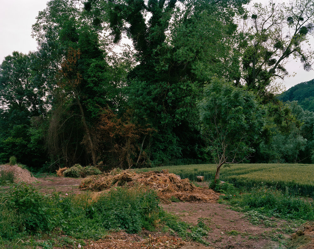 Landscape Along The Seine River, Giverny, France, 2015  39.667 x 50 inches (99.99 x 126.04 cm)  Large Format Negative, Archival Inkjet Print