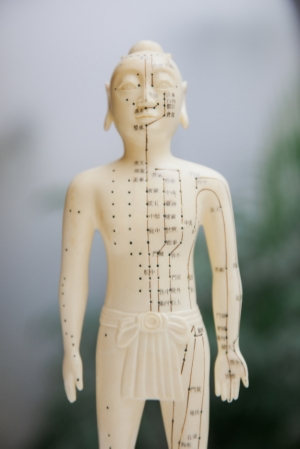 A tradition-style figurine, showing the pathways of the various meridians used in acupuncture.
