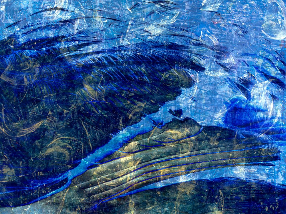 Blue Swan Nantucket Series
