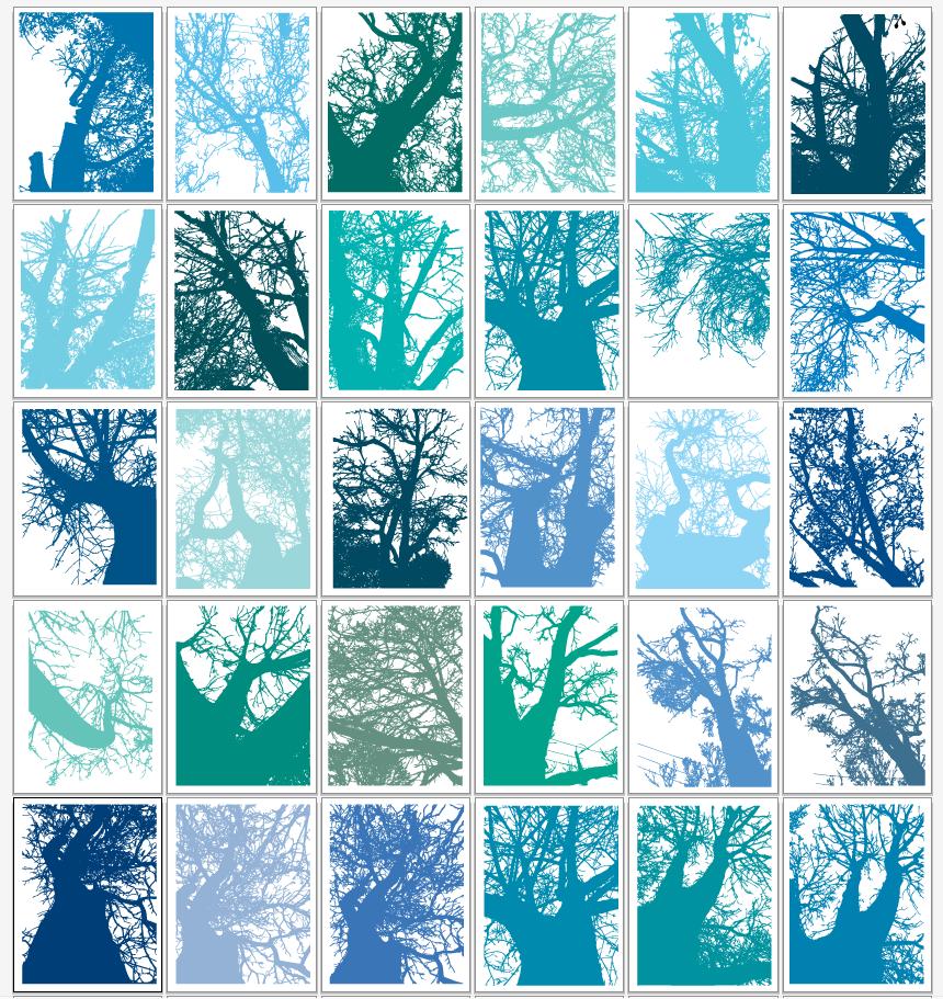 1. Digital color studies of my own photos