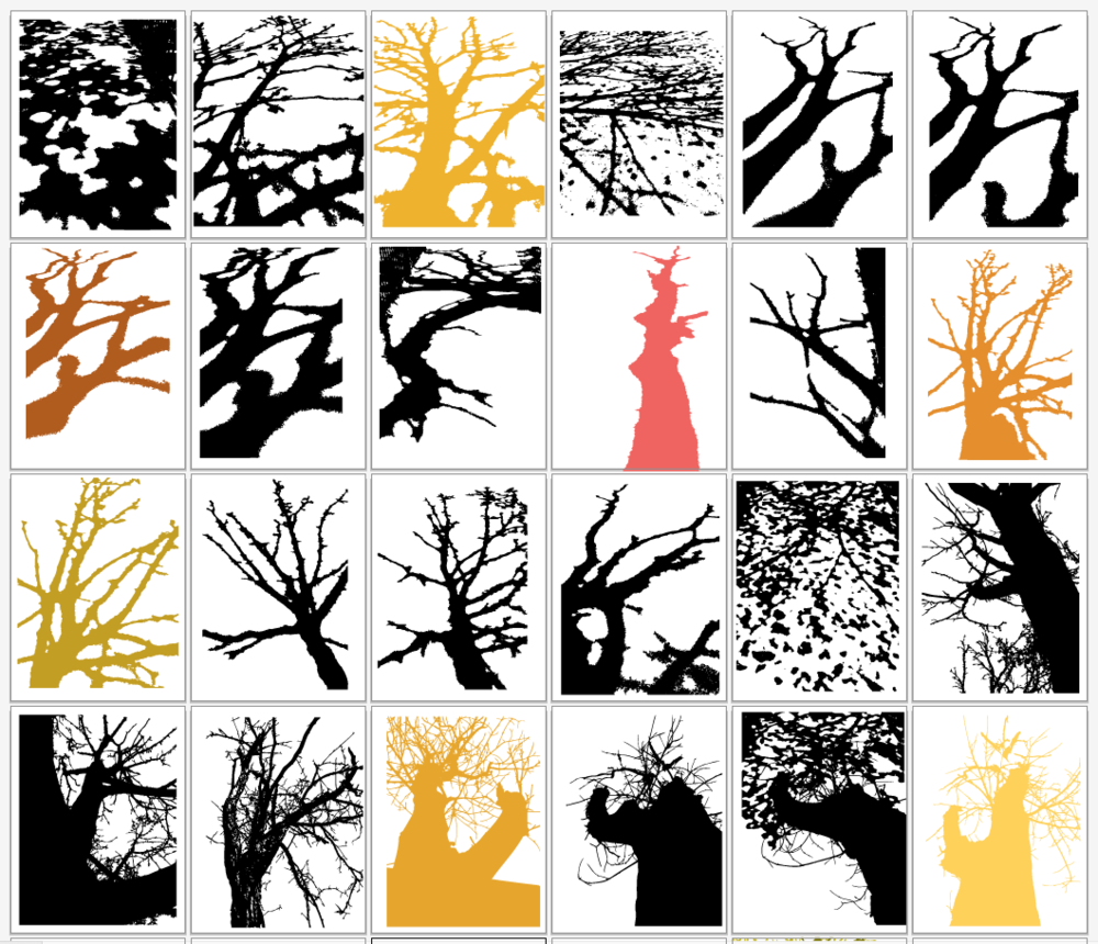 4. Digital color studies of my own photos