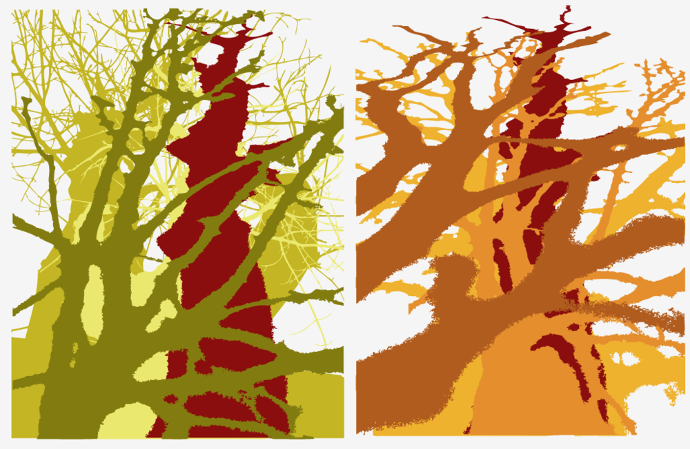 6. Digital layered color studies of my own photos
