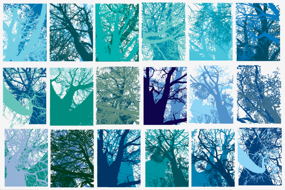 2. Digital layered color studies of my own photos