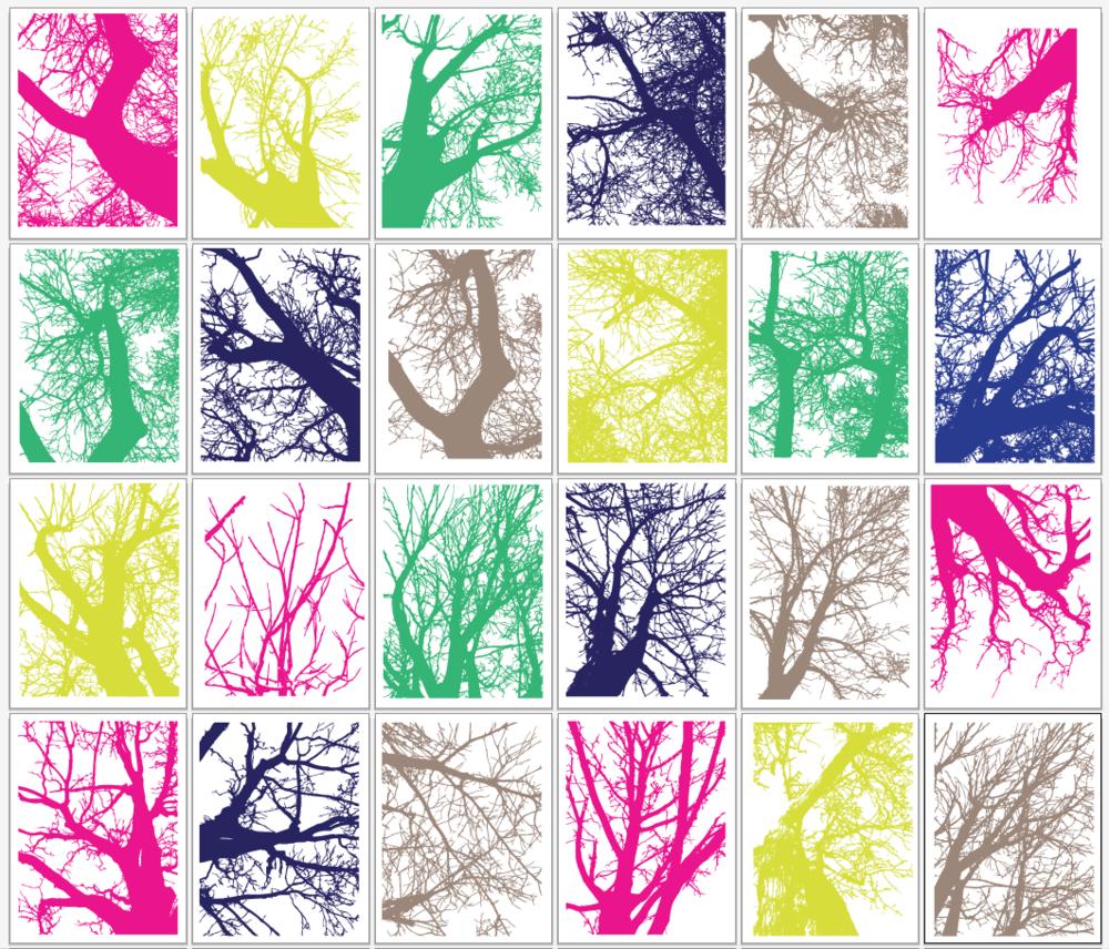 3. Digital color studies of my own photos