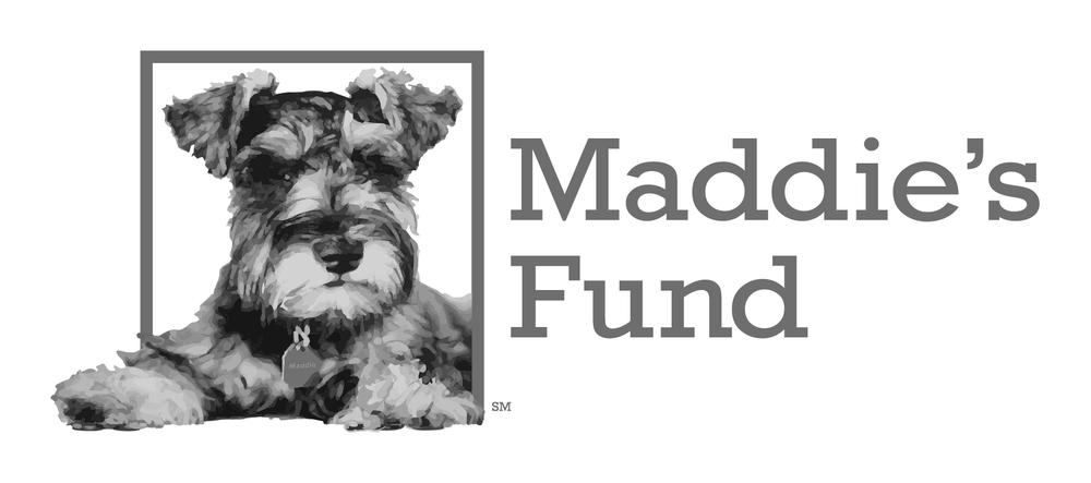 Cat Town is a proud recipient of funding from Maddie's Fund, helping to achieve a no-kill nation. #ThanksToMaddie