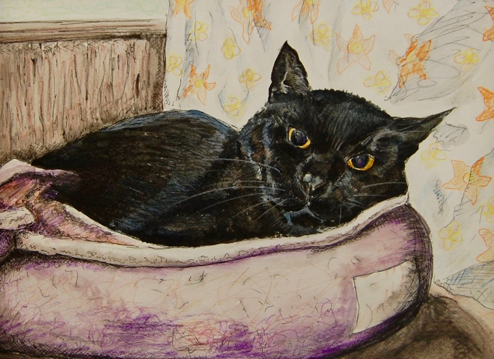 Billy was also featured in our recent art show located at the Cat Town and his lucky adopter will also get to take home his likeness in a lovely art piece to commemorate the occasion.