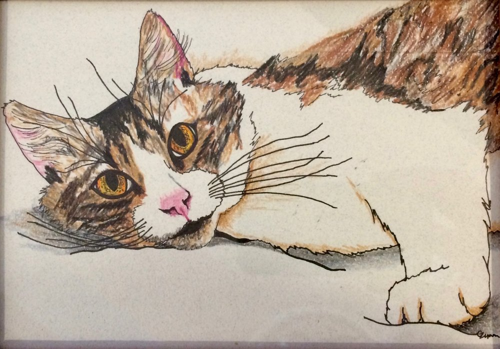 To help him find his family, Bailey has been featured in our art show located at Cat Town. The piece has been donated by the artist and his lucky adopter will take home the original work to commemorate the occasion.
