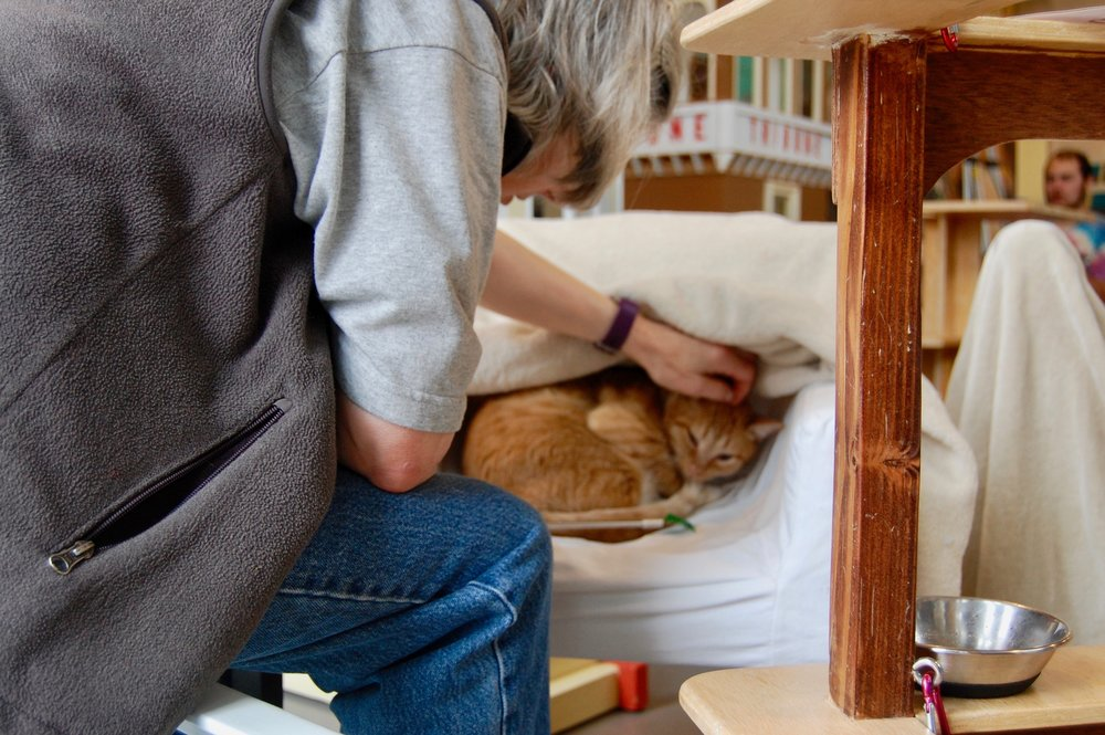 During a visit with Herman, Michaela helps him feel safe with a slow approach to pets. Photo by Cathy Niland.