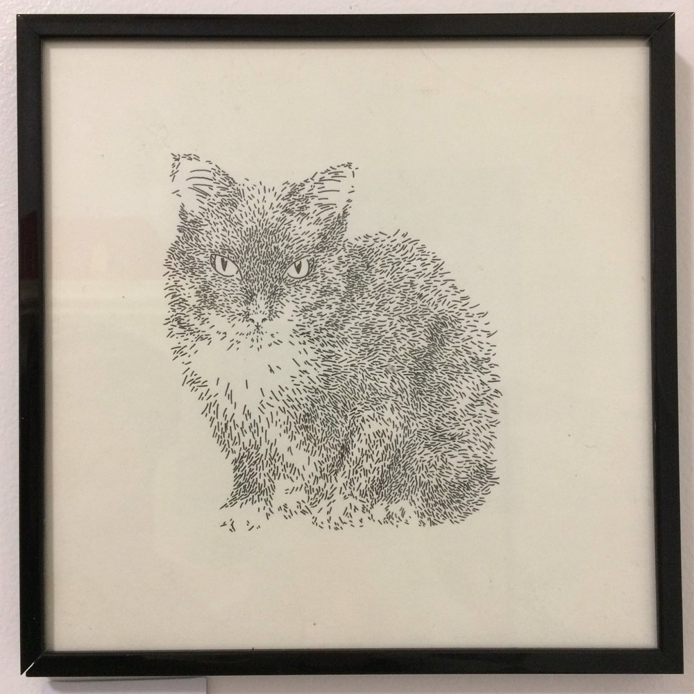 To help her find her family, Didi has been featured in our art show located at Cat Town. The piece has been donated by the artist and her lucky adopter will take home the original work to commemorate the occasion.