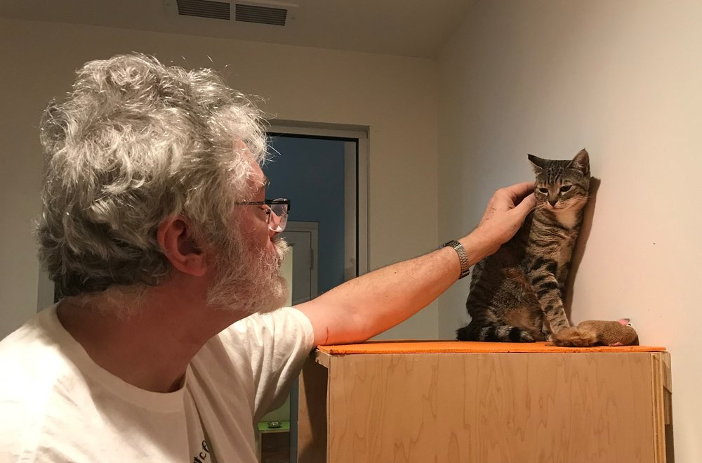 Randy working with one of our more under-socialized cats on a weekend volunteer shift.
