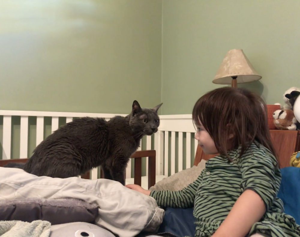 Angeline's daughter with their most recent Cat Town foster, Marnie.