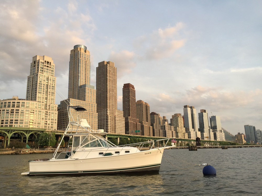 Sightseeing Boat in Manhattan
