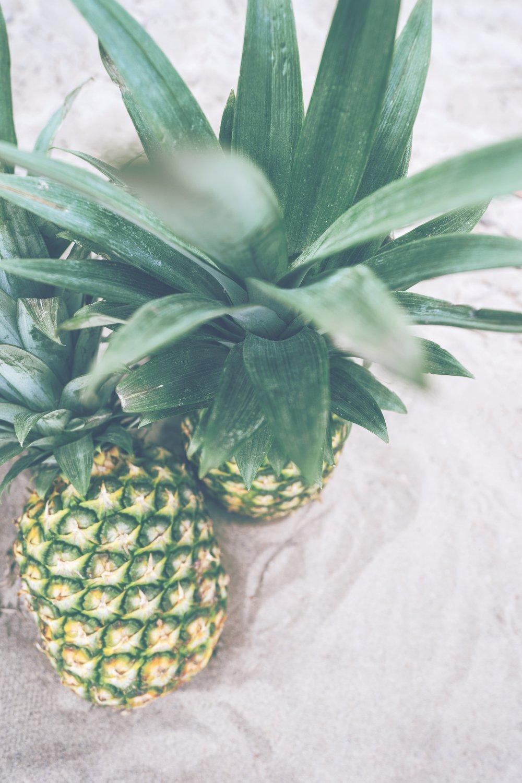 pineapple-supply-co-30573.jpg