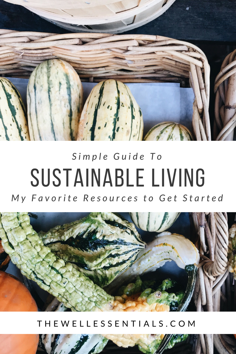 guide to sustainable living
