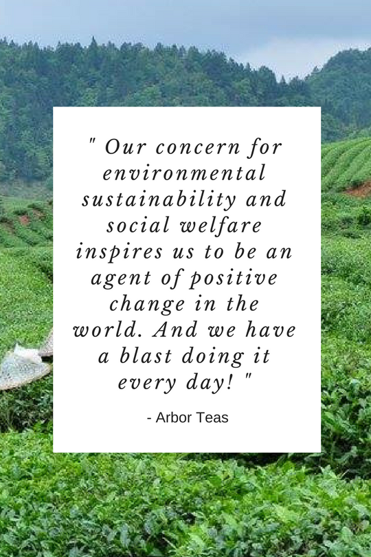 Arbor Teas Sustainable, Organic, and Fair Trade Tea - The Well Essentials