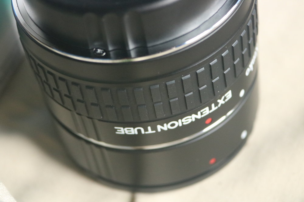 The extension tubes Harris gave me! Here are some macro photos I took with it: