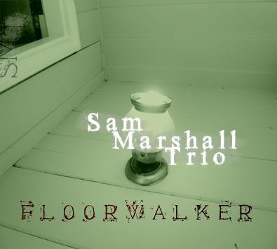 FloorWalker.jpg