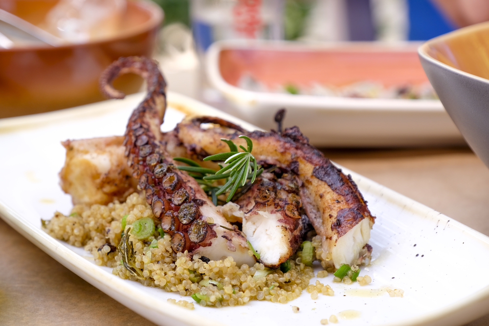 grilled octopus with herbs and grains on white plate from avli restaurant in corfu