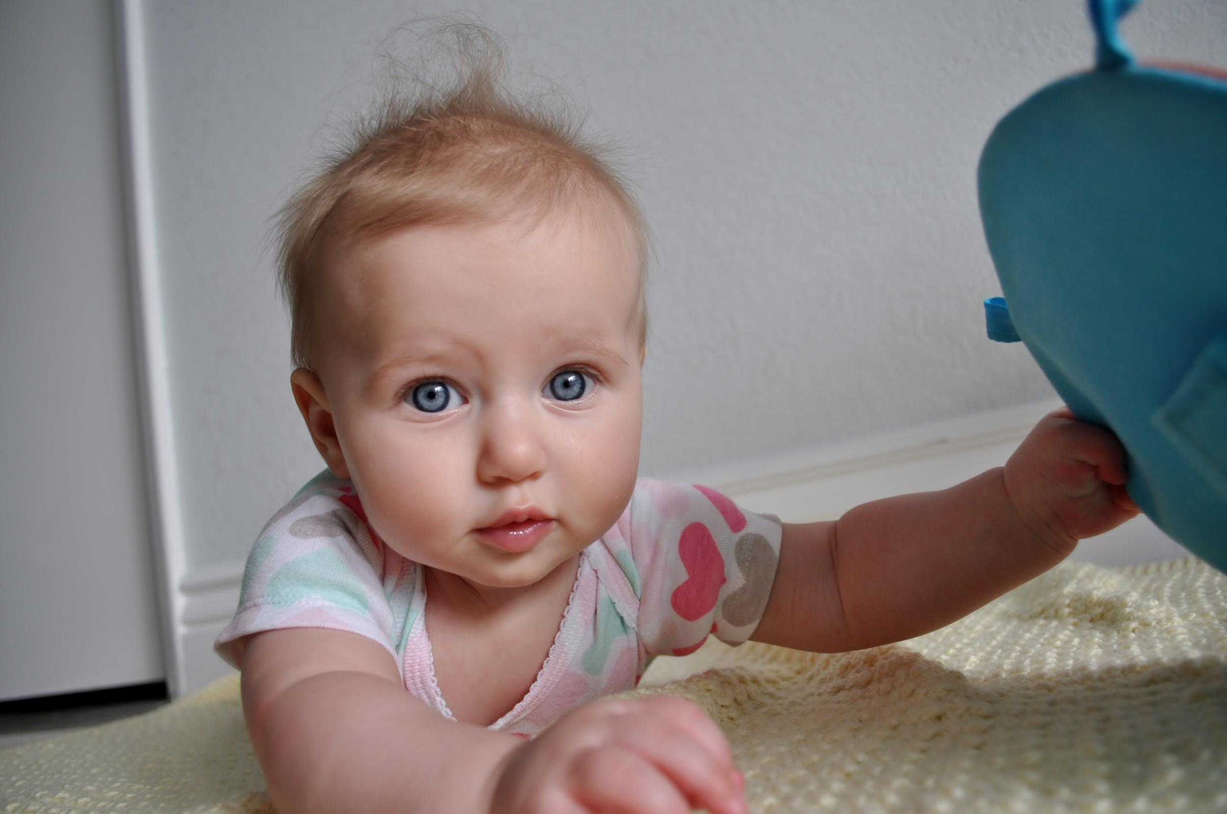 Sienna @ 6 months