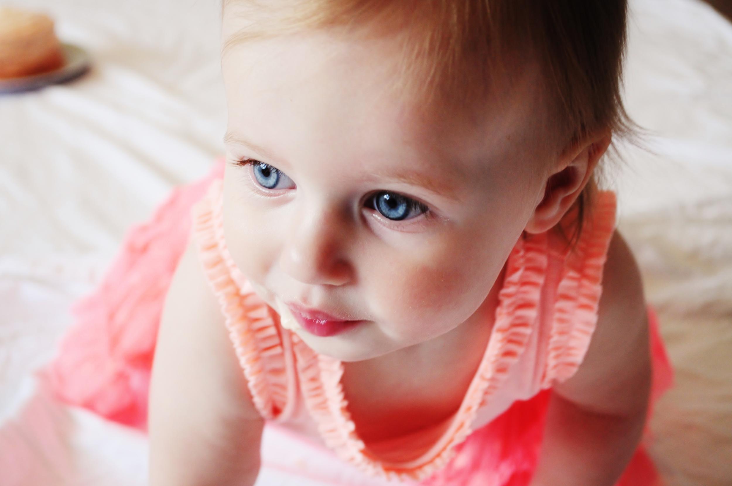 Sienna, 1 year old