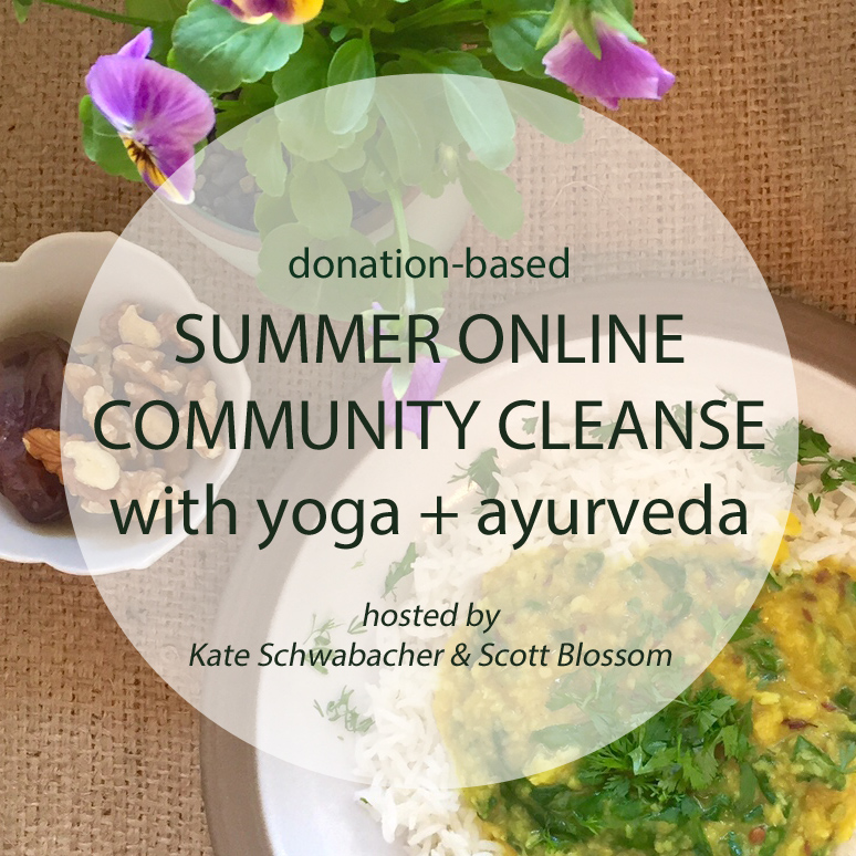 summer online cleanse 2015