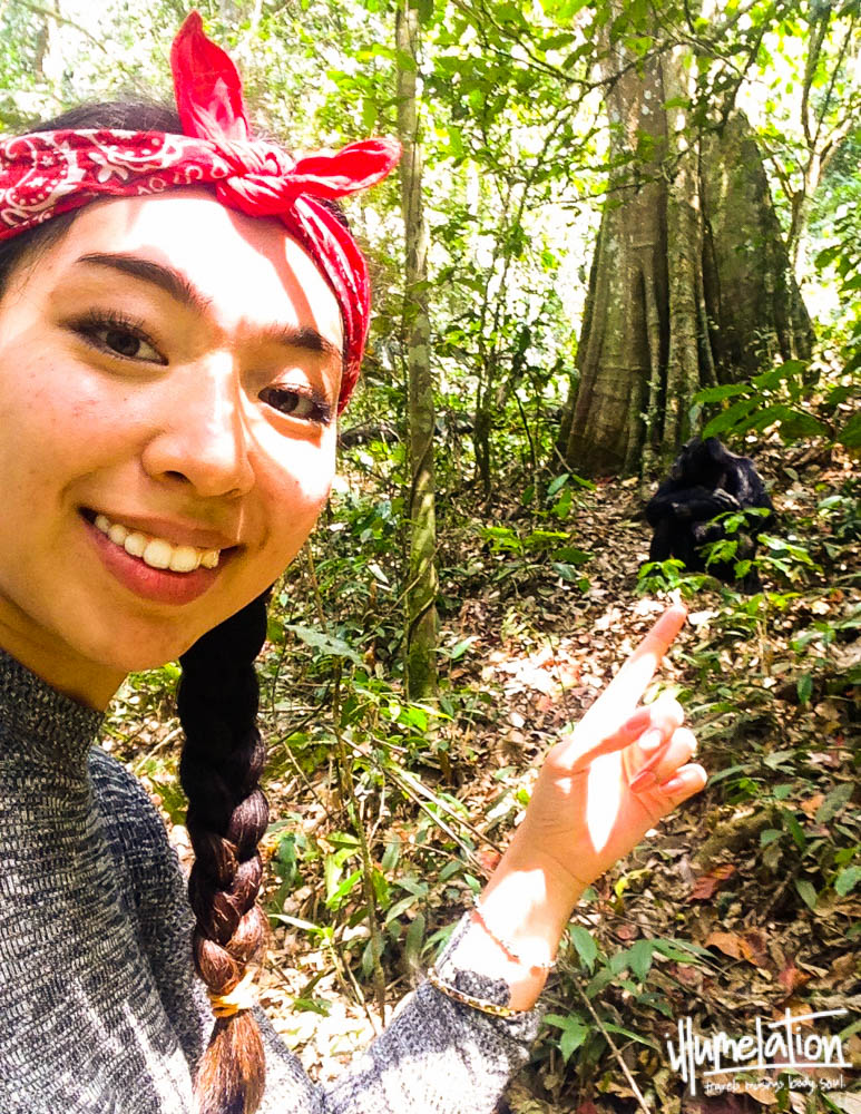 Melissa pointing at chimps. Kibale National Forest, Uganda.