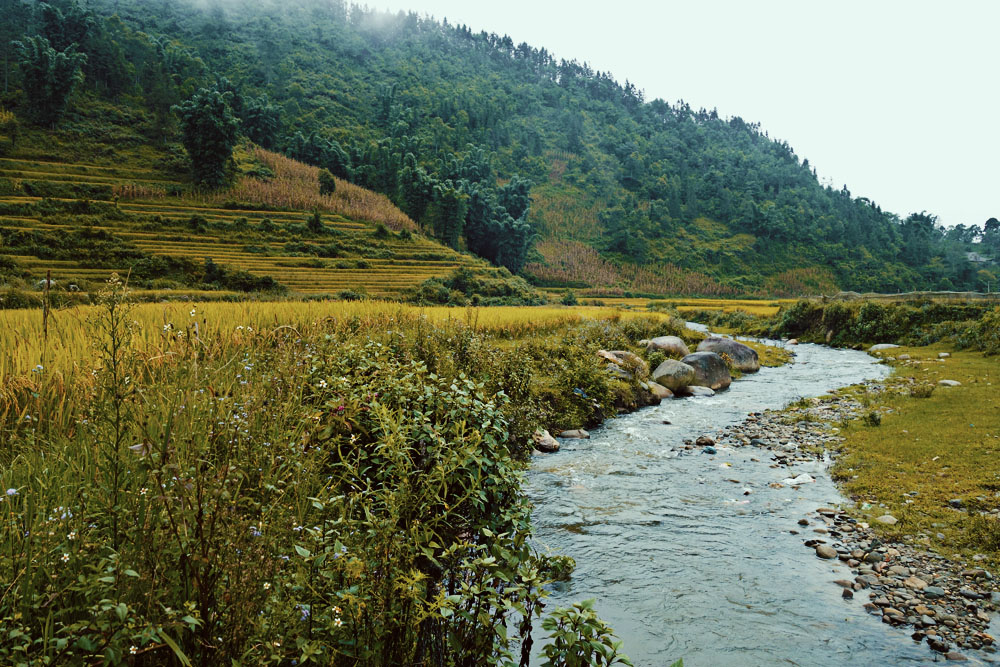 Stream and Mountains, Sapa, Vietnam - illumelation.com.JPG