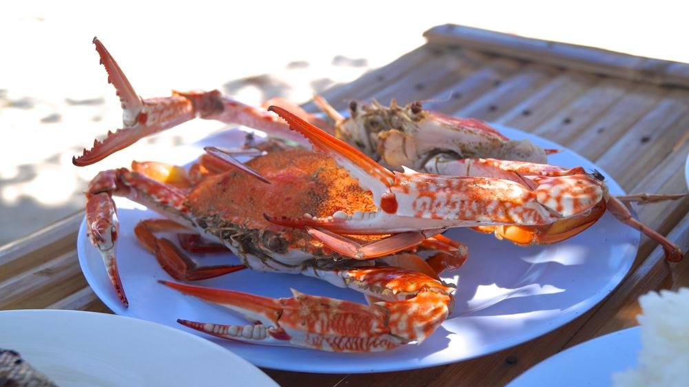 Islas de Gigantes - Antonia Island - Seafood Lobster - illumelation