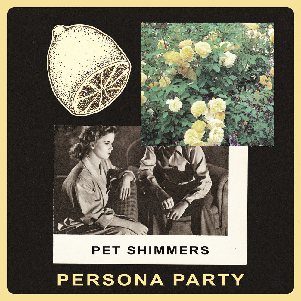 pet shimmers.jpg
