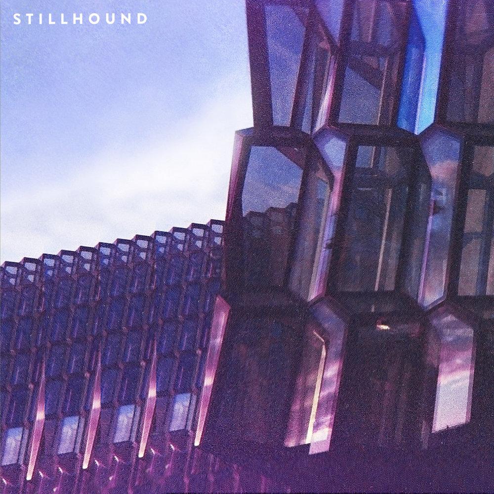 stillhound.jpg