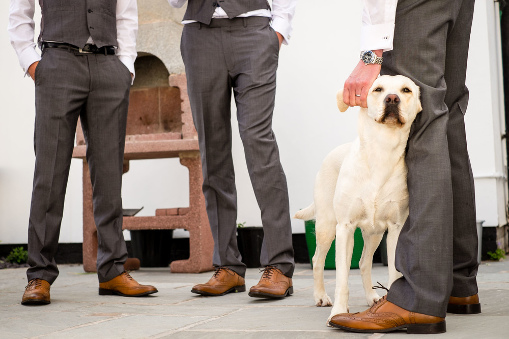 Groom Party Wedding Shoes and Dog