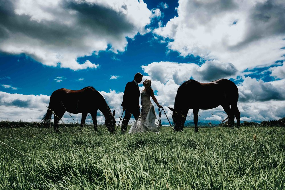 Relaxed and Natural Wedding portrait with the brides horses in Northern Ireland