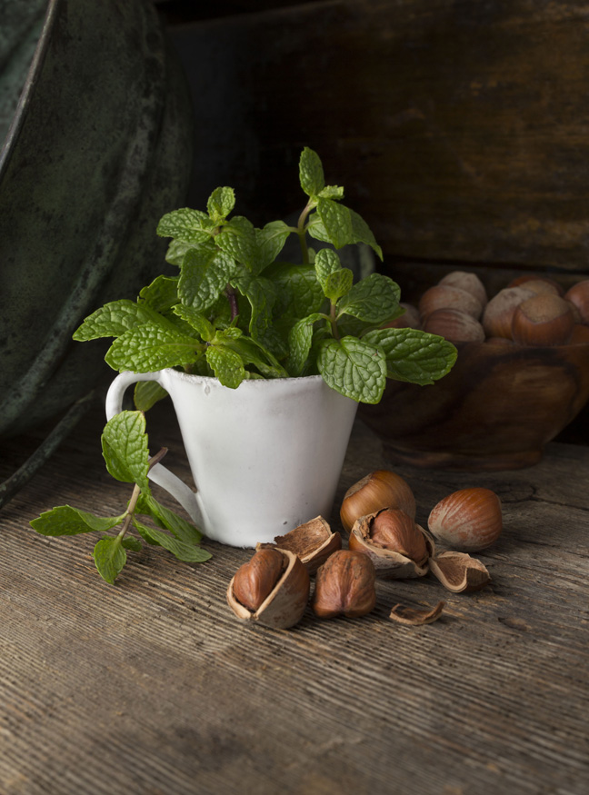 new york city photographer  new york food photographer  beverage photographer  professional photographer  food styling  prop styling  farm to table  country  window light  barnwood  editorial  advertising  close-up  digital  lifestlye  color  intensity  commercial photography  composition  concept  white  green  brown  hazelnut  mint  ceramic cup