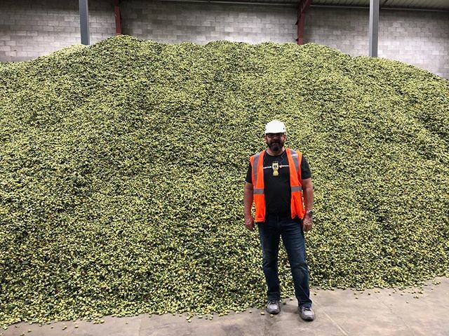 "Head Brewer Mike Brown took part in the Hopsteiner ""Proof is in the Pour Tour"" 2018 which was two full days of everything Hops: hop farm tours, hop processing, and variety comparisons"