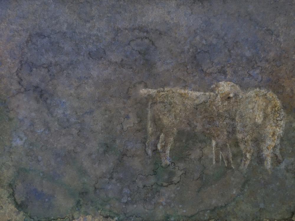 Lambs in Dusky Rain
