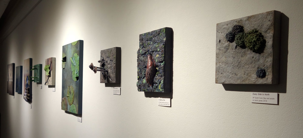 An image of my wall of artwork from the exhibition.