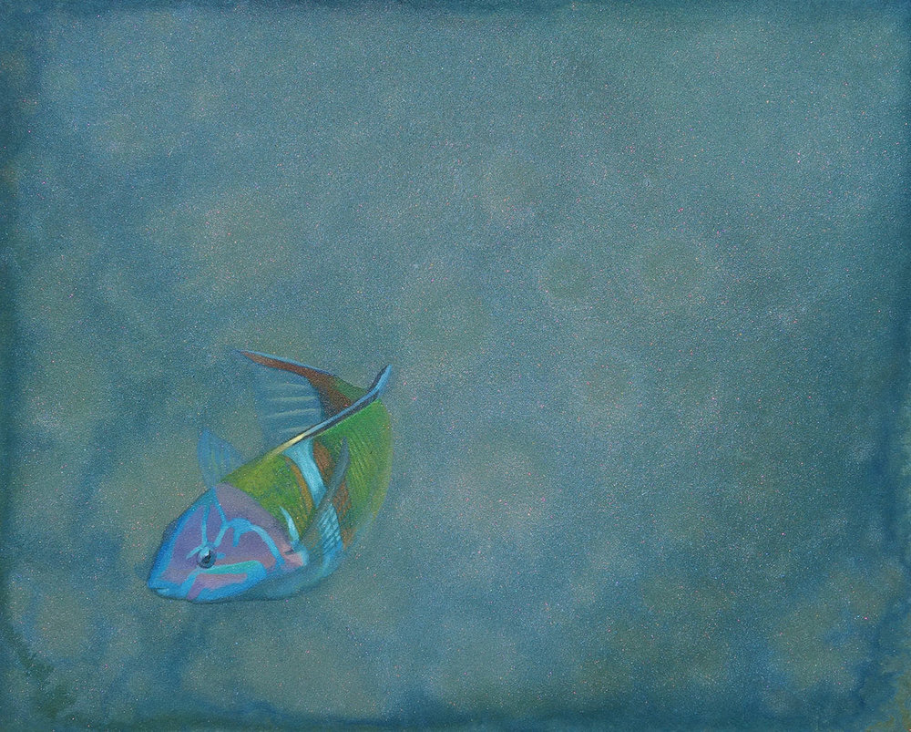 Ornate Wrasse Shelby Prindaville Thalassoma pavo acrylic painting artwork art refraction ocean patterns