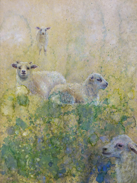 Lambs in Field - Watercolor on recycled paper12x9