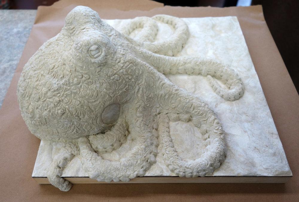 octopus sidec.jpg