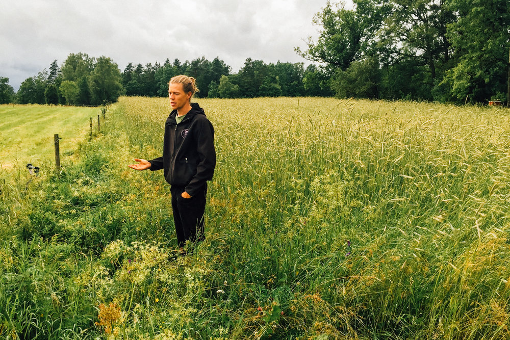 Sweden-0974.jpg