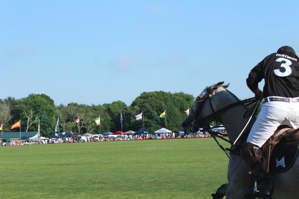Newport International Polo Series