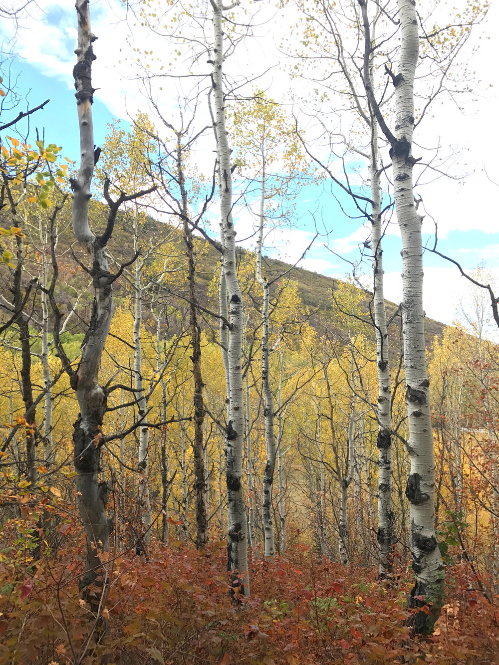 Park City in October