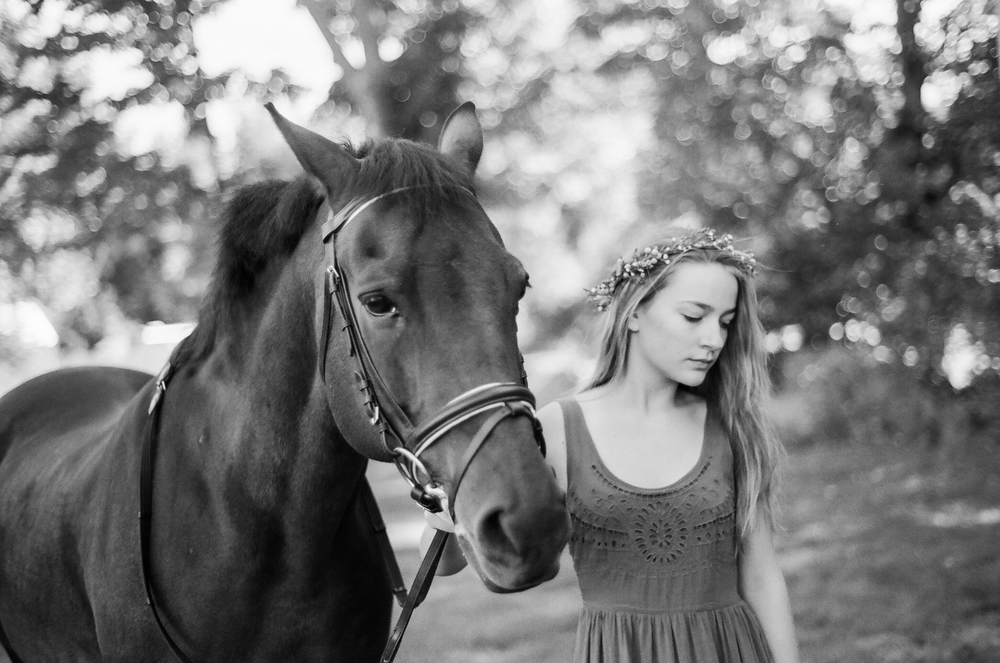 Equestrian Portraiture in Western MA