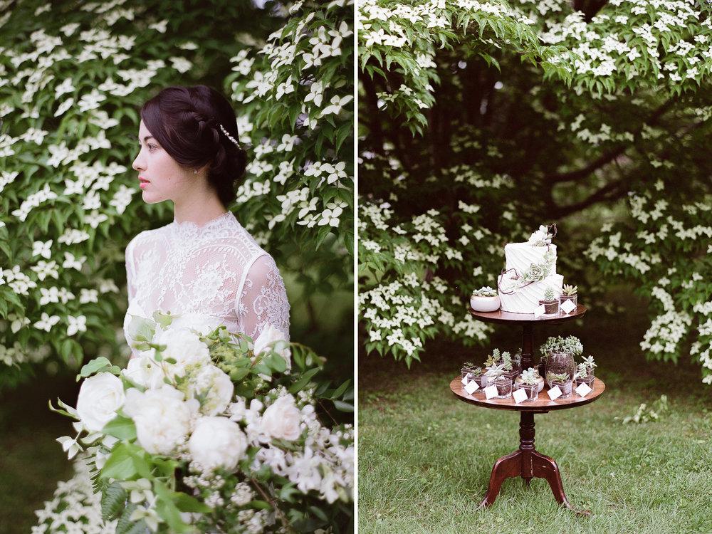 Amherst Women's Club Wedding