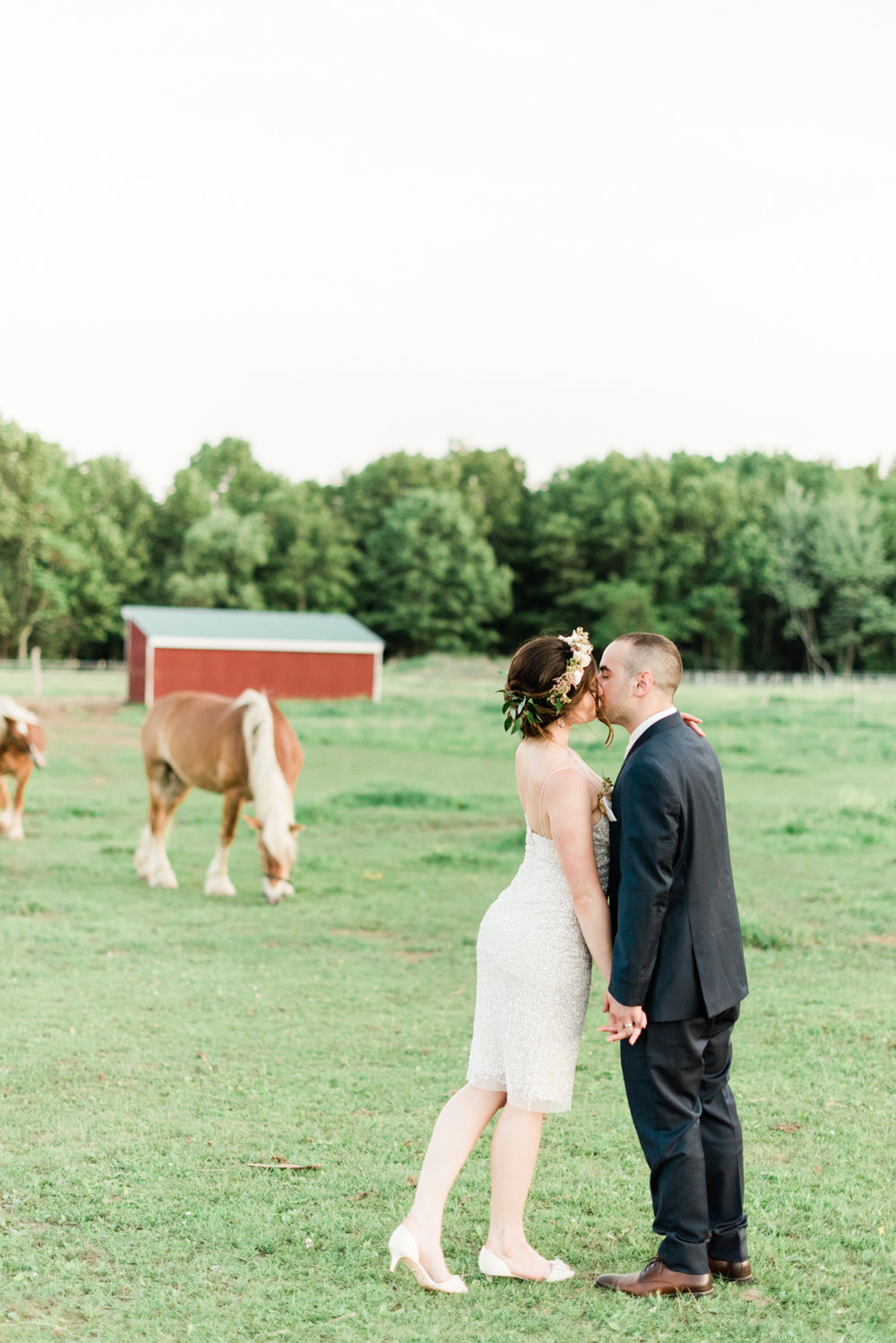 Horses and Weddings
