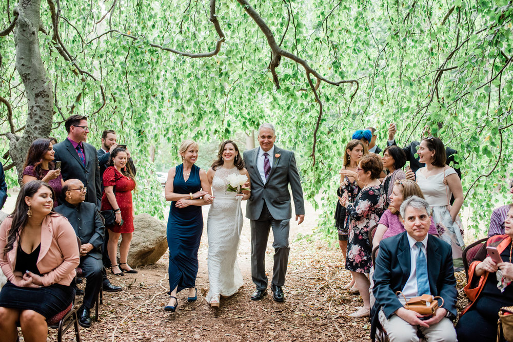Wedding Ceremony under a tree in CT