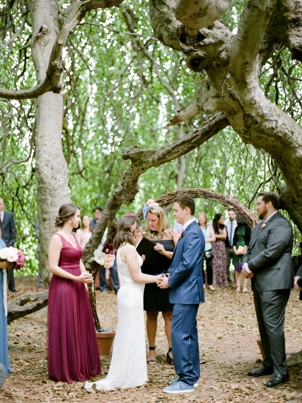 Married beneath a tree in CT