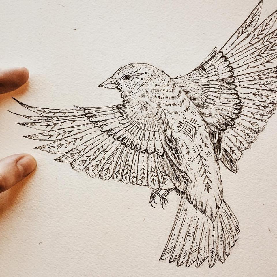 Sparrow sketchbook drawing.